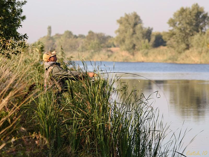 много рыбаков на реке
